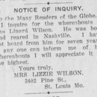 Lizzie Wilson searching for Linard Wilson