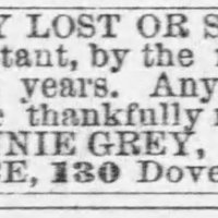 BALTIMORESUN_18660917_GREY_ANNIE.jpg
