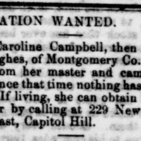 Unnamed woman searching for her sister Caroline Campbell