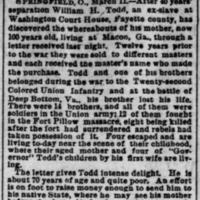 Found...Pittsburgh Dispatch Mar 12 1891.jpg