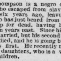 BOSTONPOST_1876_02_22_THOMPSON_GEORGE.jpg