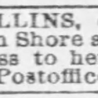 Unnamed man searching for his sister Kitty Collins
